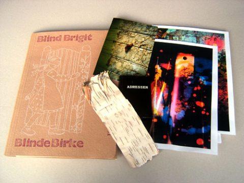 Katharina Wilczek: Blind Brigit - Blinde Birke